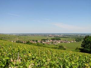 Volnay, Burgundy
